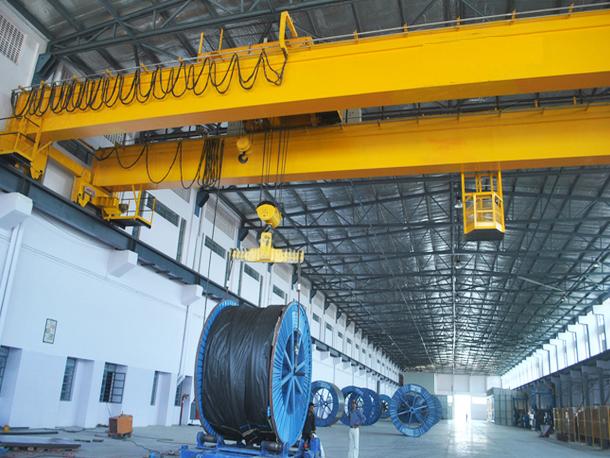 Double Girder EOT Cranes Manufacturers